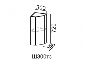 Шкаф навесной торцевой закрытый Ш300тз Модус СВ 300х720х296