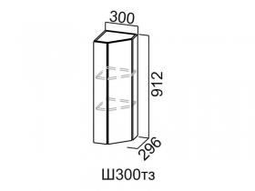 Шкаф навесной торцевой закрытый Ш300тз Вектор СВ 300х912х296